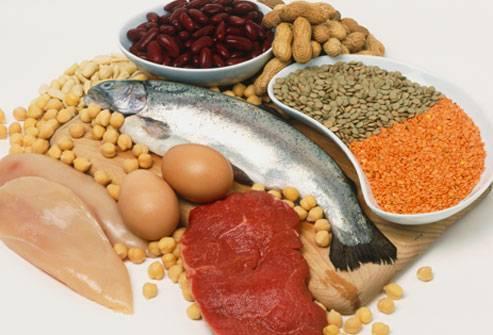 cibi che contengono proteine